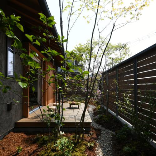 庭とデッキ