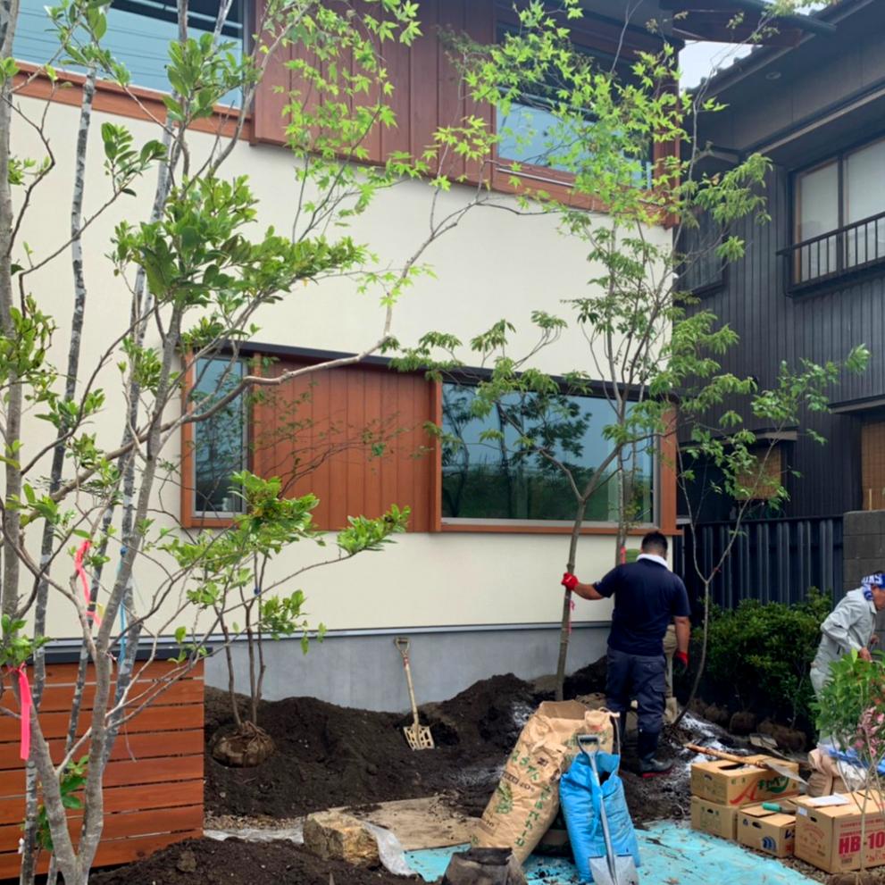 植栽ワークショップ 木の家
